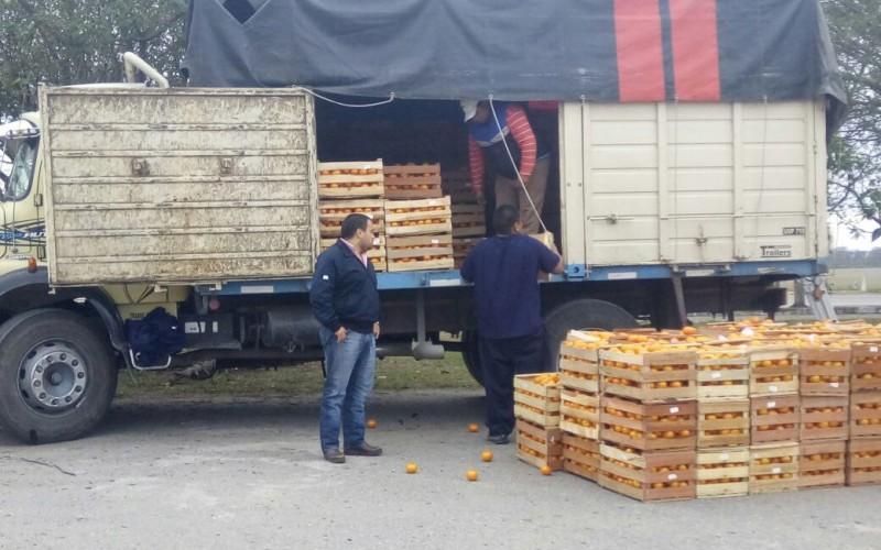 Resultado de imagen para decomisan 3000 kilos de mandarina