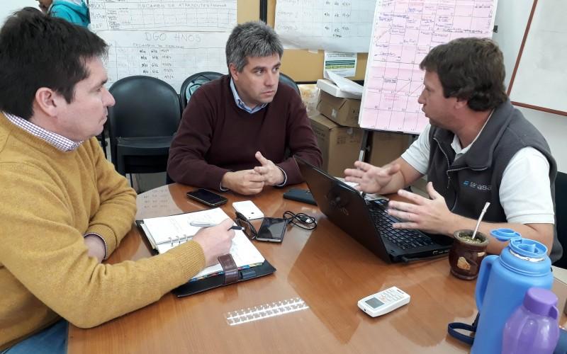 Lobesia botrana: entrega de difusores de feromonas para su control