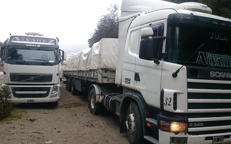 Se rechazó el ingreso al país de camiones con madera sin los tratamientos sanitarios correspondientes