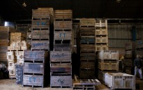El Sistema Integral de Gestión de Embalajes de Madera se implementó en Chaco-Formosa y Patagonia Sur